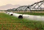 ضرورت نهادینه شدن مدیریت مصرف آب کشاورزی